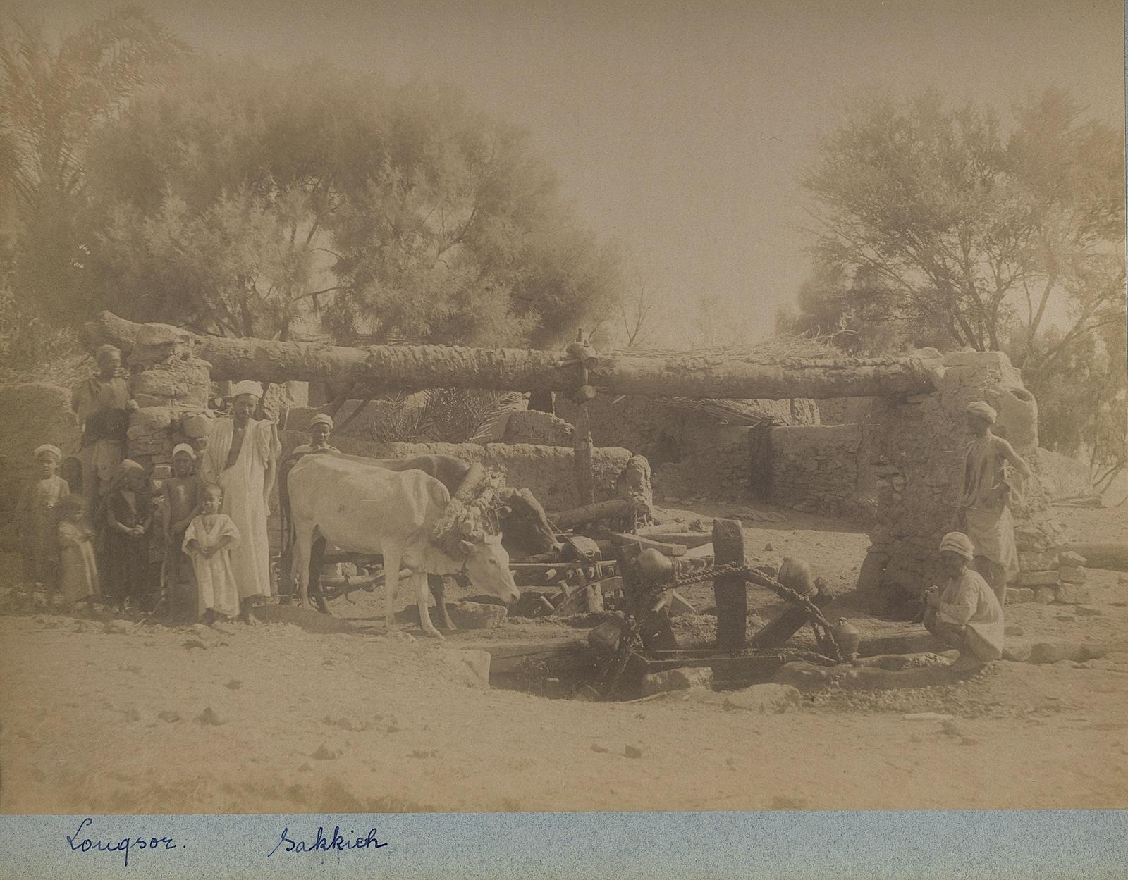 165-Beato-Louqsor-Sakkieh