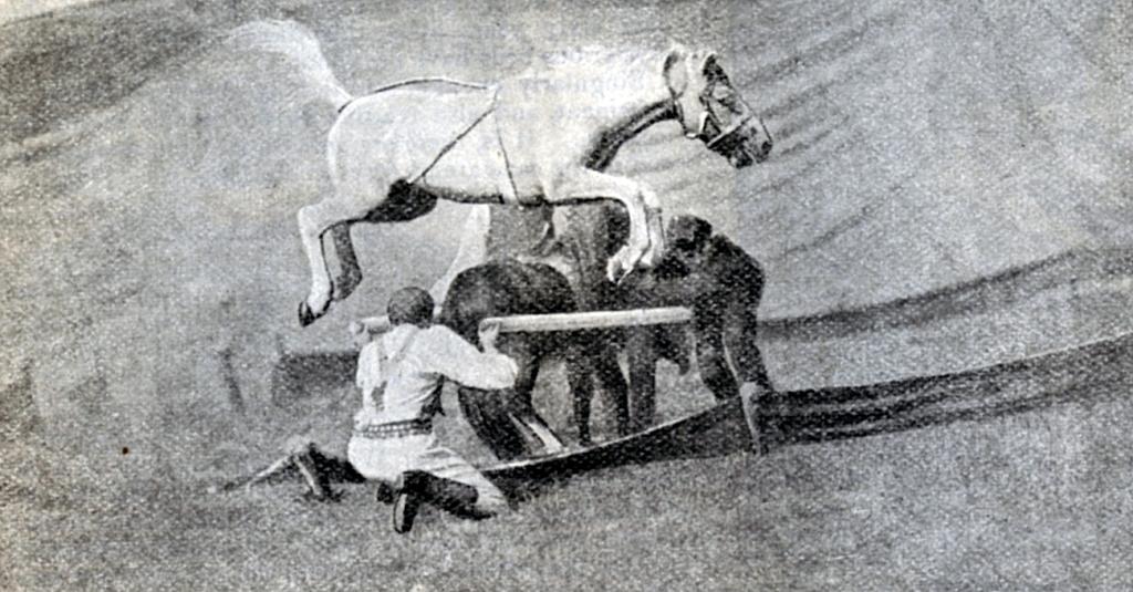 Circo -1 (trascinato) 1