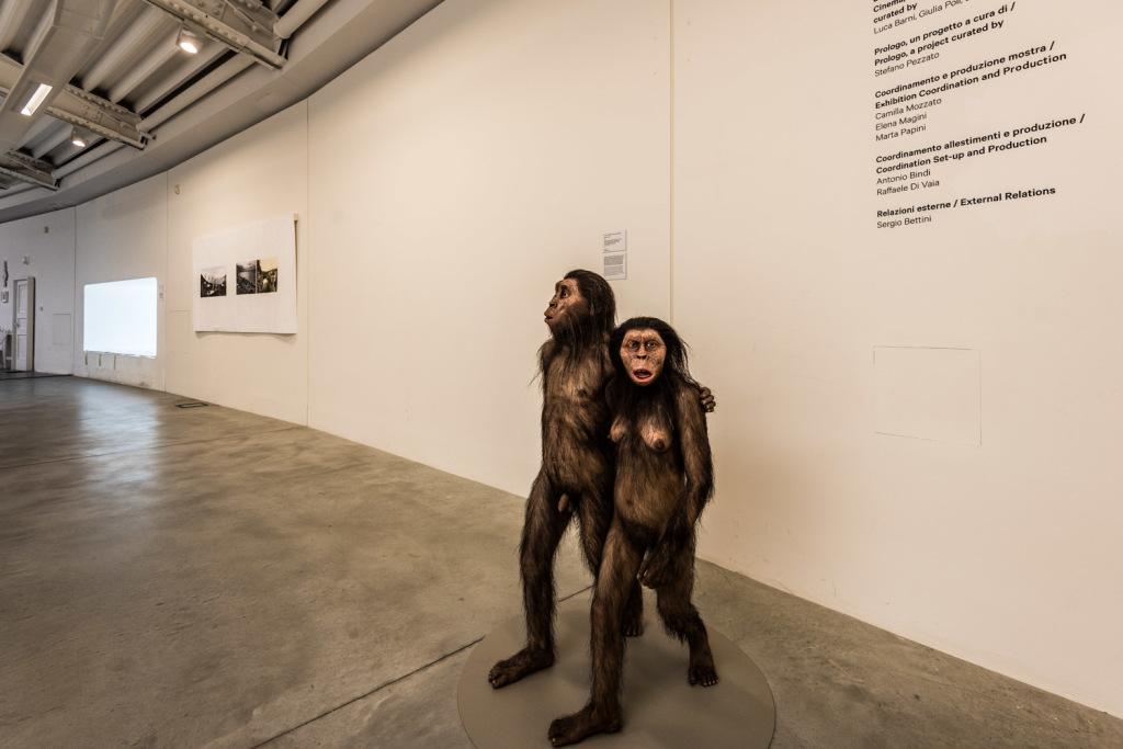 Giovanna Amoroso & Istvan Zimmermann: Australopithecines, 2016.