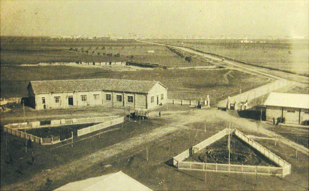 Campo Sud e sullo sfondo Foggia nel 1917-18