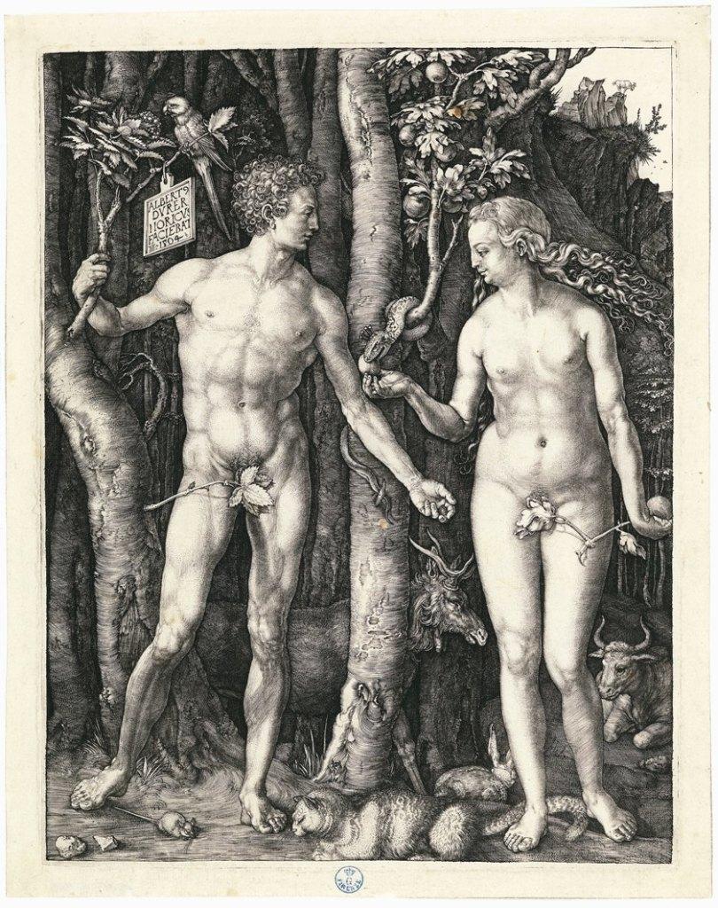 Albrecht Dürer (Norimberga 1471-1528) Adamo ed Eva 1504 Incisione a bulino Firenze, Gabinetto Disegni e Stampe degli Uffizi