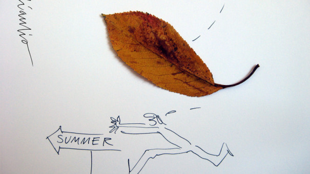 08-BARNUM -summer