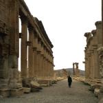Siria 16