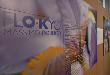 FLO•KYO AT THE MUSEO DI ANTROPOLOGIA IN FLORENCE