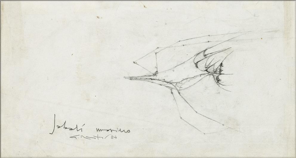 CINGHIALE DI MARE 1984 - disegno